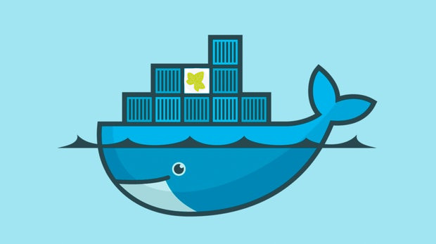 /images/news/8.0/run-in-container/ivy-on-docker.jpg